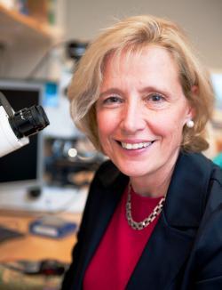 Professor Barbara Canlon.